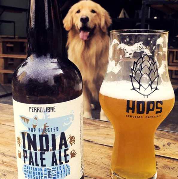 Enquanto dono aproveita cervejas especiais, cachorro pode ficar no ambiente do Hops   Foto: Divulgação / Hops
