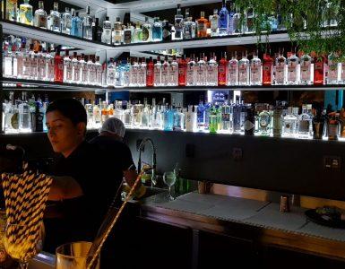 Bar especializado em gim abre em Goiânia | Foto: Luísa Gomes/Mais Cinco