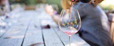 Sommelier ensina a harmonizar vinhos  Foto: Pixabay